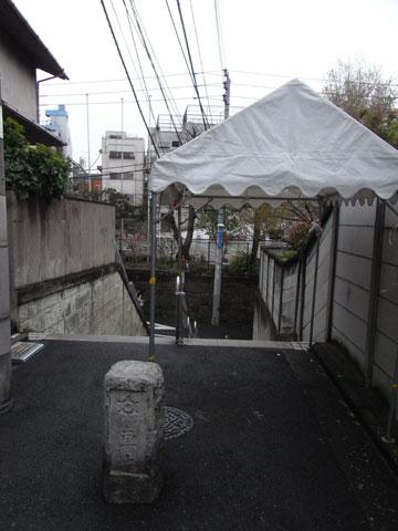 20100416_05.jpg