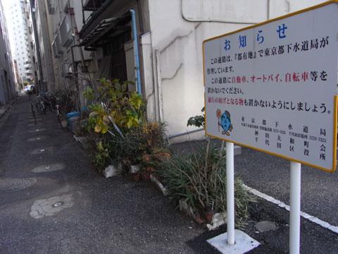20110123_06.jpg