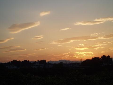 2005yokota_13.jpg