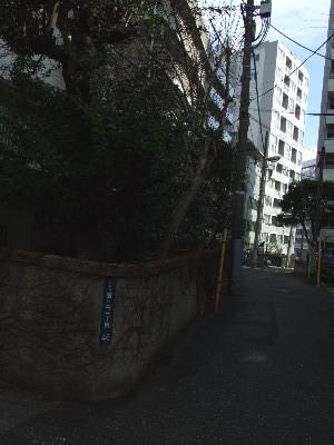20070113_0002.jpg