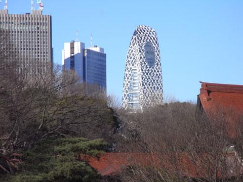 20090125_10.jpg