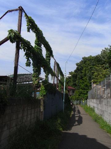 20090515_13.jpg