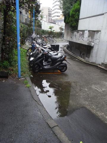 20091001_03.jpg