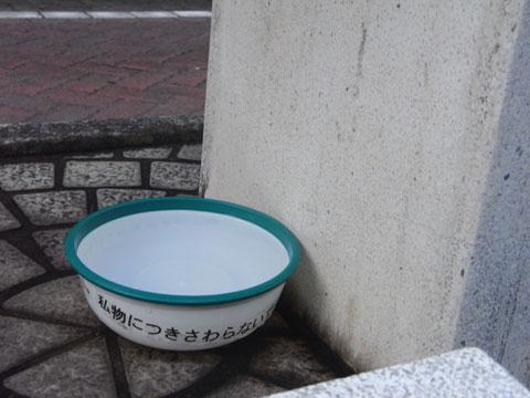 20100811_14.jpg