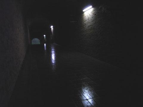 20100818_21.jpg