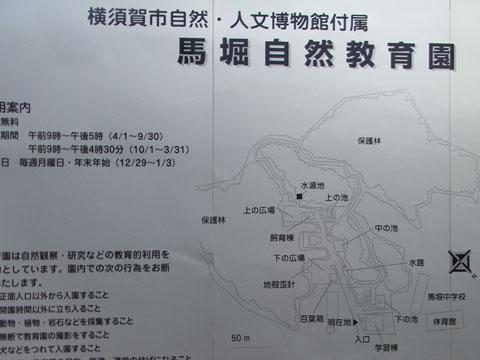20100818_51.jpg