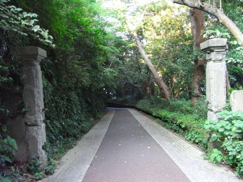 20100818_80.jpg