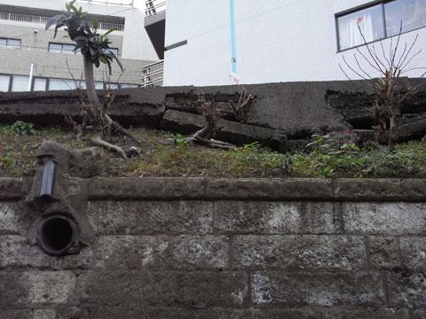 20110130_09.jpg