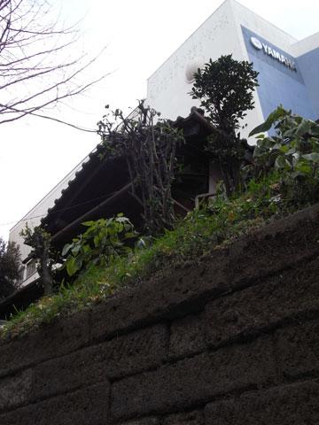 20110130_11.jpg
