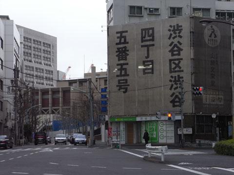 20110130_45.jpg