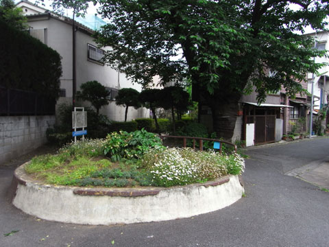 20110522_22.jpg