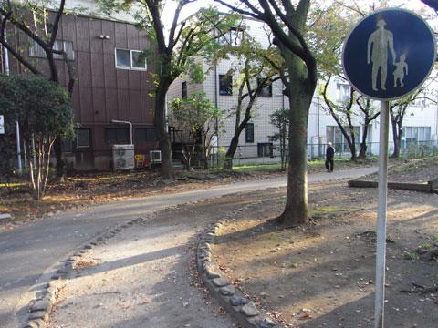 20111123_19.jpg