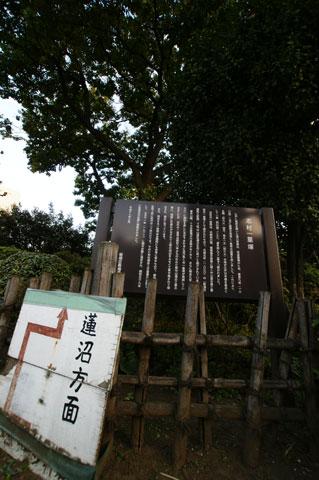 ichiri1.jpg